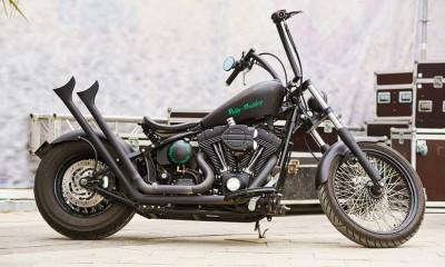 На базе Harley Davidson Heritage Softail Deluxe